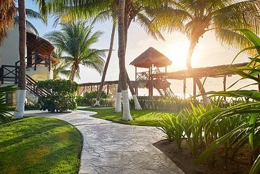 Desire Riviera Maya terrein